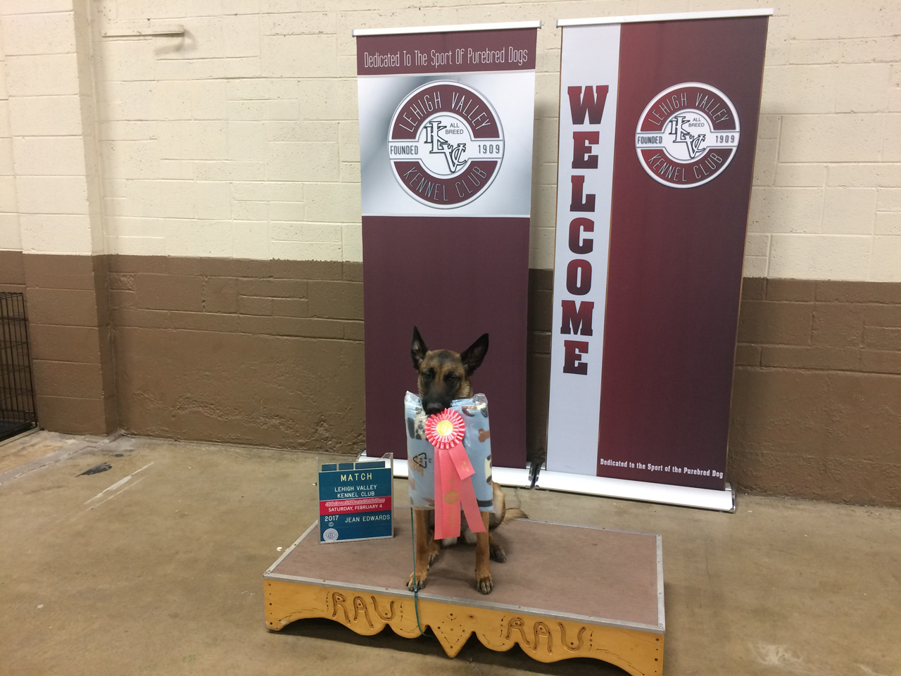 German Sheppard holding awards